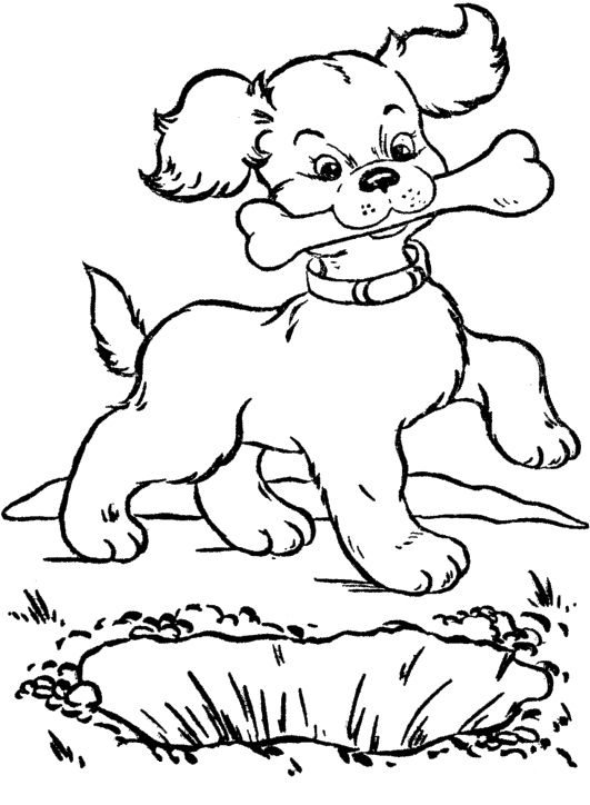 Eat Dog Bone Coloring Page Dog
