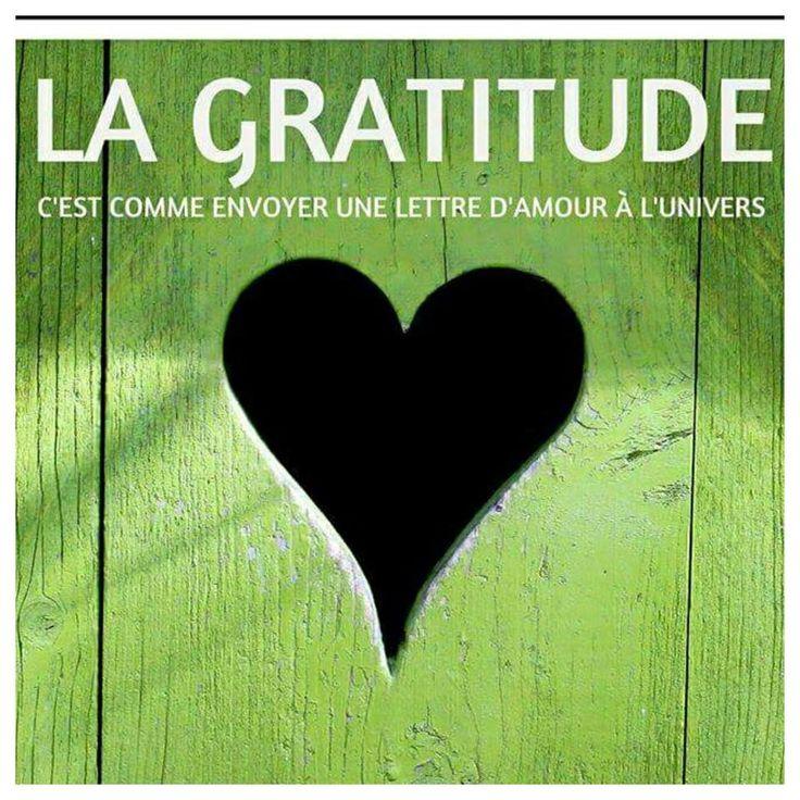 La gratitude - Humour Actualités Citations et Images