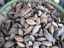 """raw, it resembles the flavor of roasted pumpkin seed, and when roasted almond. In Indonesia, especially in Minahasa and Moluccas islands, the kernels are used for making cake. Pili kernel is also used in chocolate, ice cream, and baked goods. The largest buyers of pili nuts are in Hong Kong and Taiwan, the kernel is one of the major ingredients in one type of the famous Chinese festive desserts known as the """"moon cake""""."""