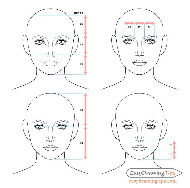 Female Face Drawing Proportions Female Face Drawing Drawing Proportions Drawing Tutorial Face