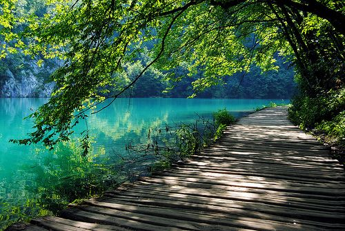 looking at this is like a little mental vacation.  how peaceful!: Favorite Places, Summer Day, Paths, Color, Beautiful Places, Trees Decks, Photo, Long Walks, Plitvic Lakes