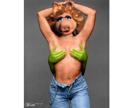 43 best images about Naughty Muppets on Pinterest