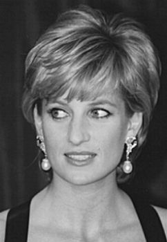 Diana  Beauty that shines for all to see