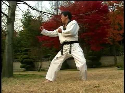 List of Korean Names for Taekwondo Kicks - Taekwondo ...