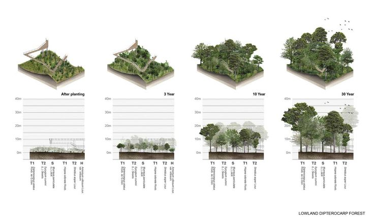 LAB (2016): Urban Reforestation, Metro Forest Bangkok (TH), via landezine.com