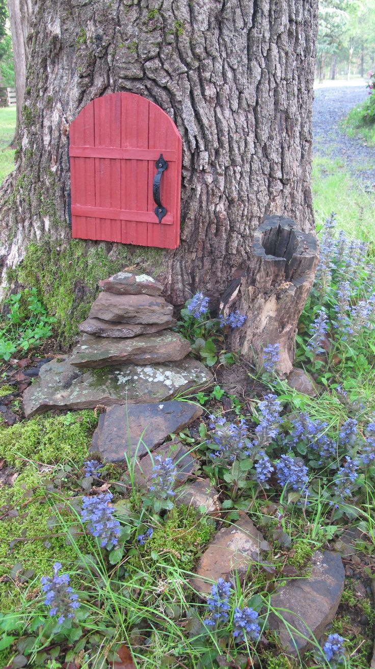 """The toad house and the """"toad road""""."""