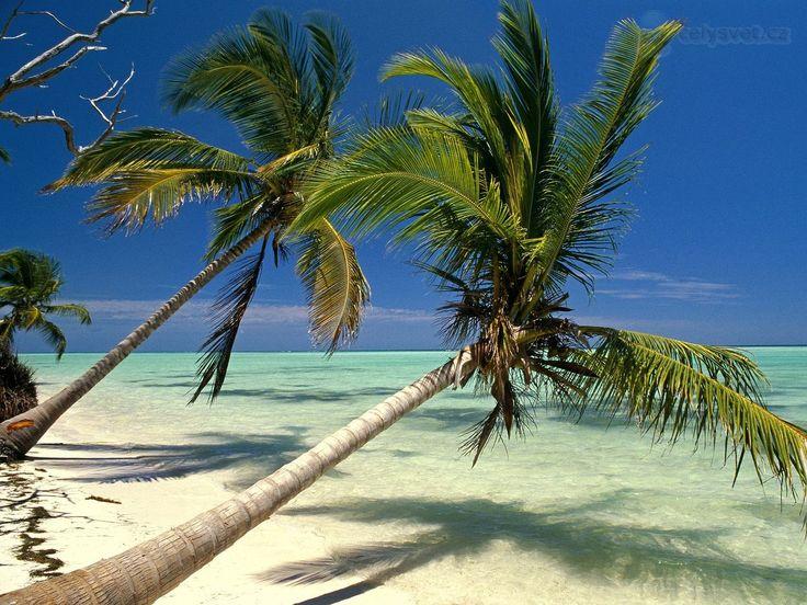 pics of punta cana dominican republic | Punta Cana, Dominikánská republika / Punta Cana, Dominican Republic