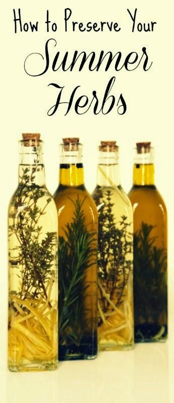 Keep garden-fresh herbs handy all fall and winter, and leave the store-bought dried herbs on the shelf.