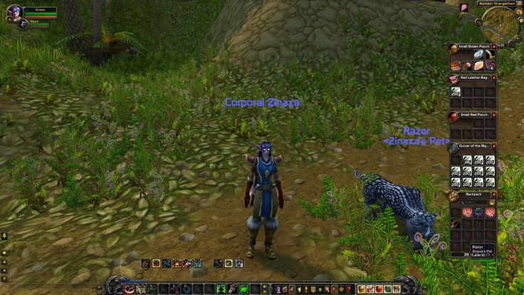My first character untouched since Vanilla still in STV. When TBC released I went Horde and never logged this character again. In Cata I got a second account (as previously my parents paid for the game) which I still play now. I hope it stirs some memories for you :) #worldofwarcraft #blizzard #Hearthstone #wow #Warcraft #BlizzardCS #gaming