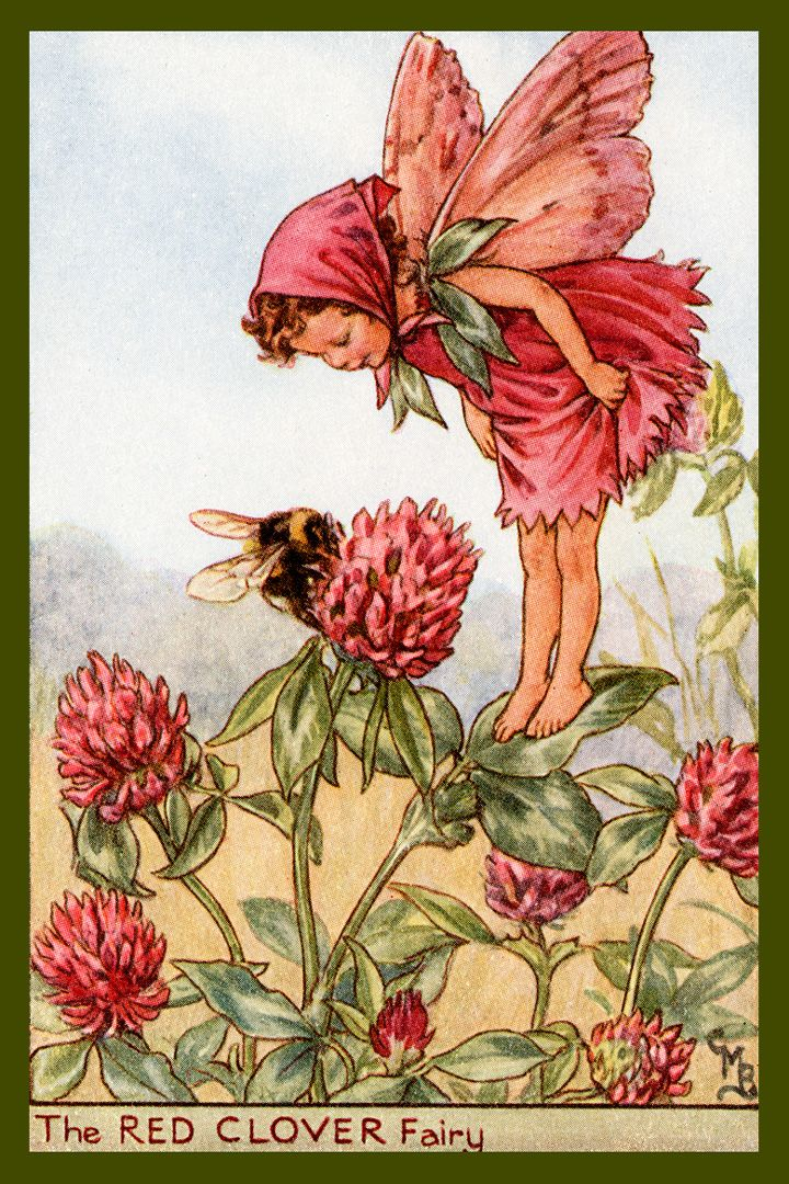 The Red Clover Fairy by Cicely Mary Barker from the 1920s. Quilt Block of vintage fairy image printed on cotton. Ready to sew. Single 4x6 block $4.95. Set of 4 blocks with pattern $17.95.