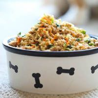 Why spend so much money when you can easily make homemade dog food?!  10 Homemade Dog Food Recipes Owning a dog means that you have to spend anywhere from $250 to $700 on food a year, depending on the quality of food and the size of your dog. While your dogabsolutely deserves the best