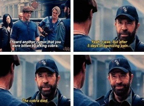 Chuck Norris the Great