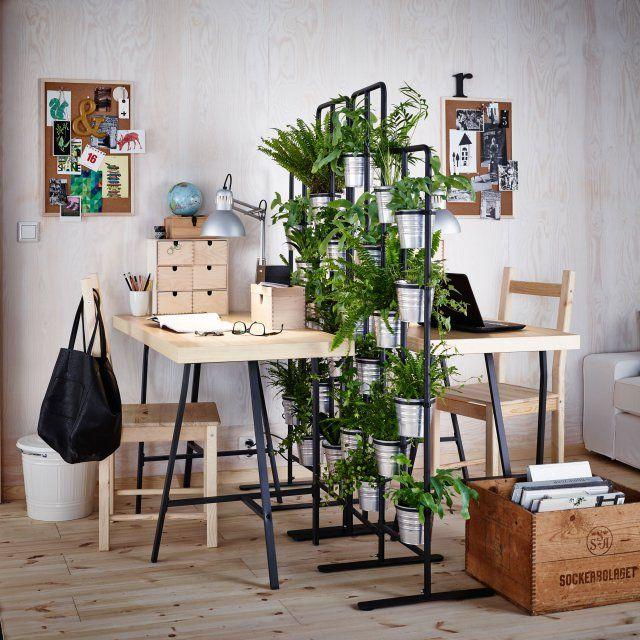 1000 id es sur le th me plantes de bureau sur pinterest plante de bureau plantes d 39 int rieur. Black Bedroom Furniture Sets. Home Design Ideas