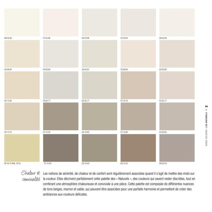 G0.10.50 sikkens et autres gris colorés