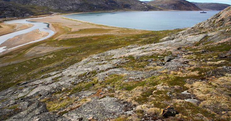 Factores bióticos y abióticos de la tundra. La tundra, el más frío de todos los biomas de la Tierra, se compone de numerosos elementos vivientes y no vivientes. Existen dos tipos diferentes de tundra en la Tierra. La tundra ártica abarca la amplia franja de frías llanuras sin árboles que rodean el Polo Norte. La tundra alpina existe en las cimas de las altas montañas, donde los árboles no ...