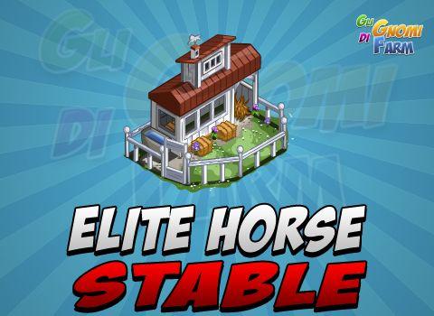 Consigli per la Elite Horses Stable