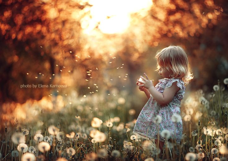 love the lightLights, Little Girls, Magic, Sweets, Kids Photography, Beautiful, Photos Shoots, Children Photography, Fields