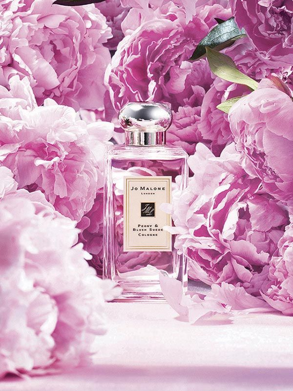 Jo Malone™ Peony Blush Suede Cologne : The essence of charm. Peonies in voluptuous bloom, exquisitely fragile. Flirtatious with the juicy bite of red apple and the opulence of jasmine, rose and gillyflower. Mingling with the sensuality of soft, blush suede. Luxurious and seductive.