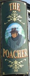 Poacher - Bedwell Crescent, Stevenage, Hertfordshire, UK.