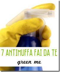 7 Antimuffa Fai da Te - Green Me
