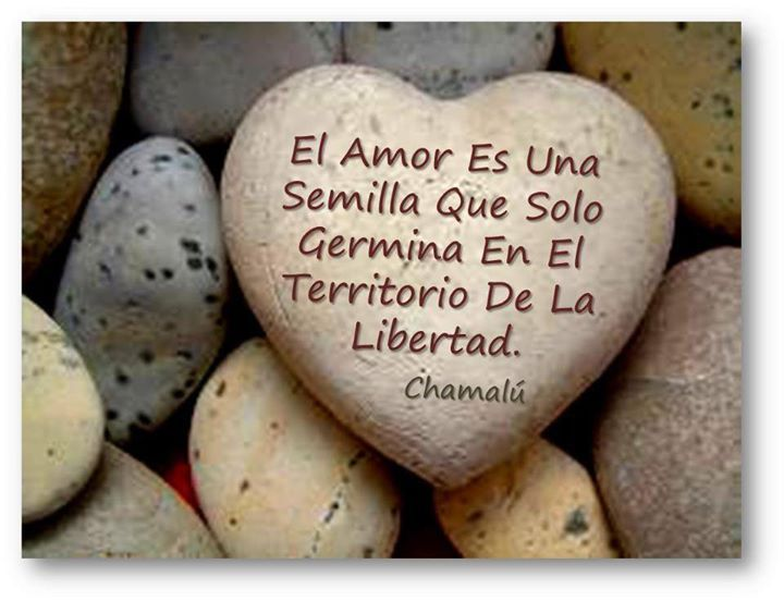 awesome Imagen Romantica de hoy Nº18457 #amor #romanticas #postales