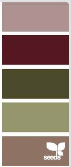 Maroon and earth tone color palette