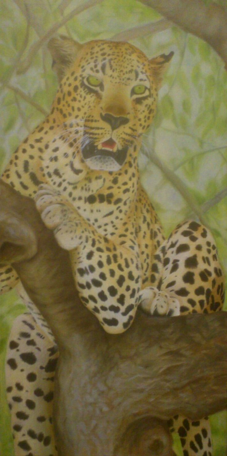 Leopard Oil Painting - Christiaan Combrink 2015