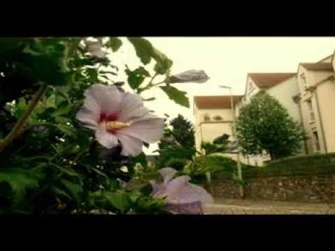▶ Andreas Scholl - Philipp Heinrich Erlebach Cantata ''Wer sich dem Himmel übergeben'' - YouTube