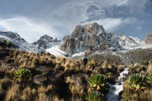 Impressionen einer Mount Kenya Besteigung auf einer unserer Kenia Reisen mit Trekking.