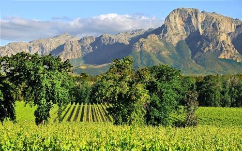 The incredible views from Vrede en Lust Franschhoek Valley and only 20 minutes from La Cle des Montagnes - 4 luxurious villas on a working wine farm