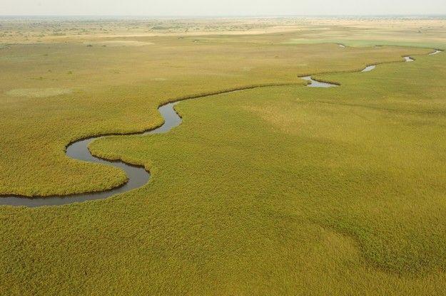 Photo du delta de l'Okavango au Botswana