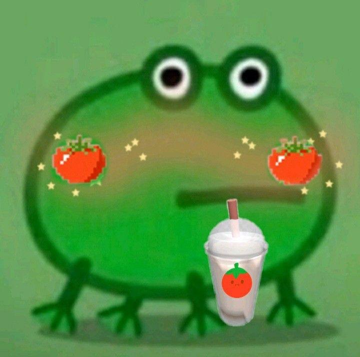 Frog Idk Creds Lechedetomate On Tiktok Go Follow Frog Meme Frog Amazing Frog