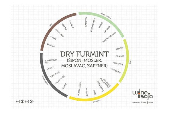 Dry Furmint flavor profile - More and more people say more often and more loudly that Furmint is a unique type of grape.