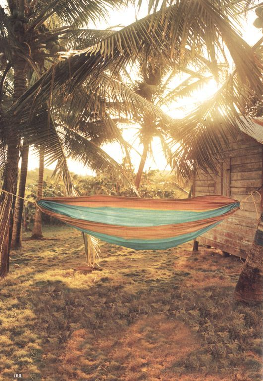 beach hammock beneath the palm fronds  life is a hammock 244 best search for the perfect hammock images on pinterest      rh   pinterest