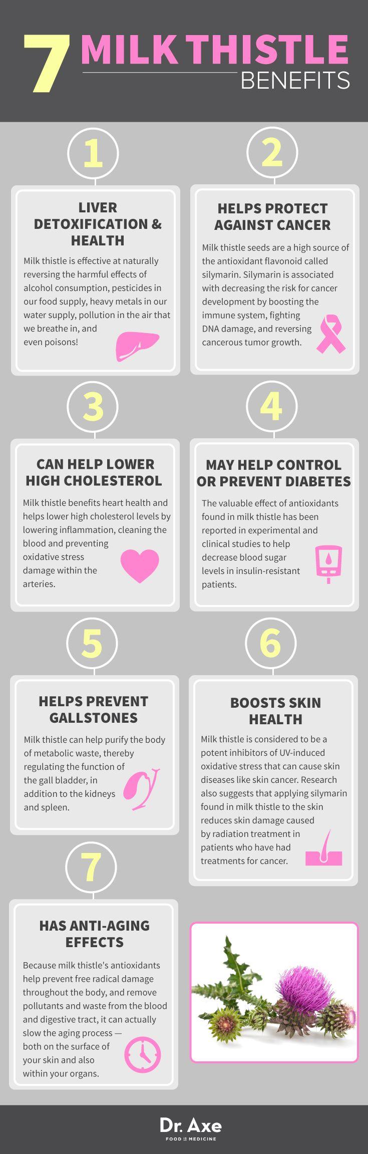 7 Restorative Milk Thistle Benefits: Detox the Liver