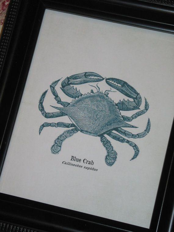 Blue Crab Art Print Crab Art 8 x 10 Sea by HamiltonHousePrints2, $10.00