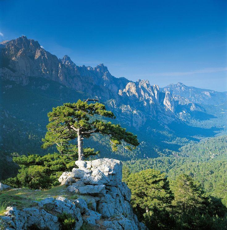 Corsica, France, Les Aiguilles de Bavella www.louercorse.com