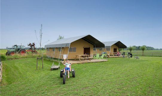De luxe en comfortabele safaritenten op het glamping veld van FarmCamps 't Oortjeshek in Kamerik, Utrecht. Een boerenavontuurlijke vakantie voor jong & oud.