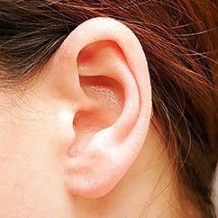 ear-242x242.jpg (242×242)
