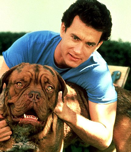 "Beasley, a Dogue de Bordeaux, starred with Tom Hanks in ""Turner & Hooch"""