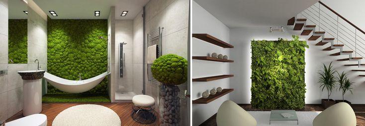 Фитостена: вертикальный сад у вас дома