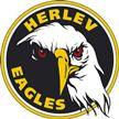 Herlev Eagles vs Frederikshavn White Hawks Jan 03 2017  Live Stream Score Prediction