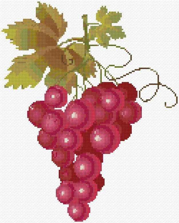 Cross Stitch | Grapes xstitch Chart | Design