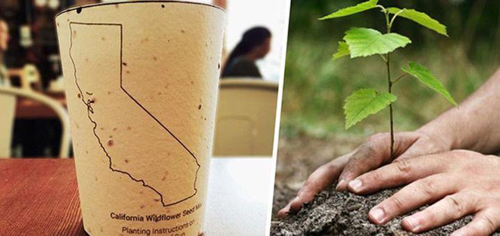 Этот бумажный стаканчик может изменить мир к лучшему - http://pixel.in.ua/archives/14140