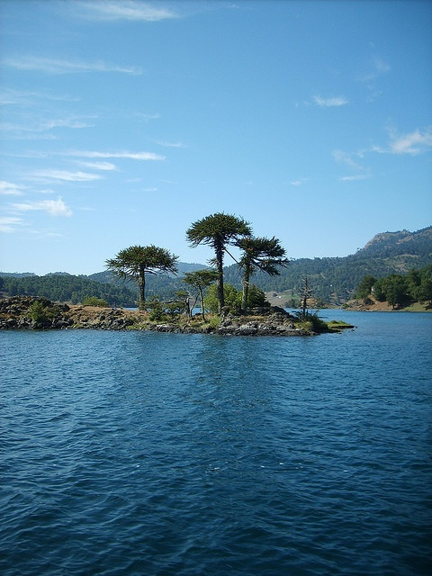 Beautiful - Pehuen Huapi, Chile