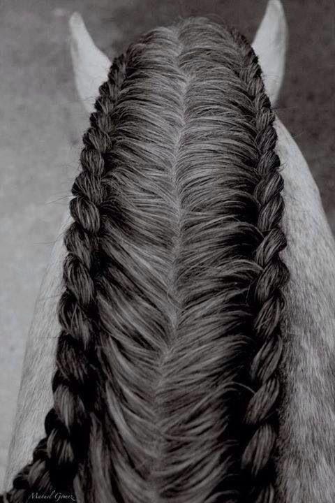 Frisur                                                                                                                                                                                 Mehr