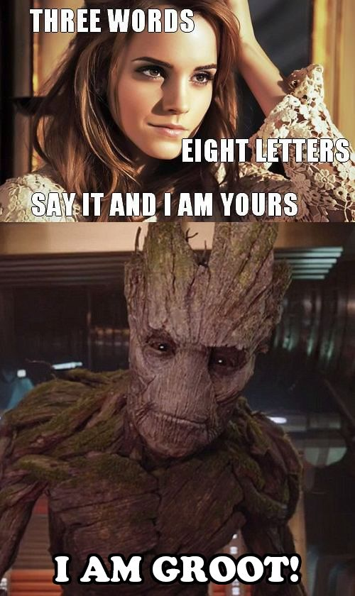 Groot is prolly the Guardian of the Galaxy that has the largest female fan base now haha