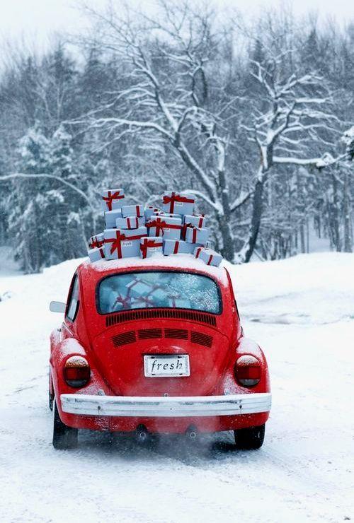 seasonal blog, follow snowandcoco for more winter/christmas!❄☃