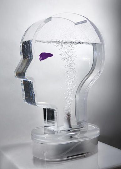 Google Image Result for http://nerdapproved.com/wp-content/uploads/2009/03/head-shaped-fish-tank.jpg%3Fcb5e28