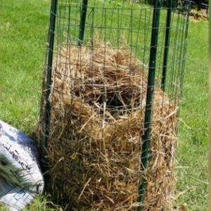 Новый метод выращивания …
